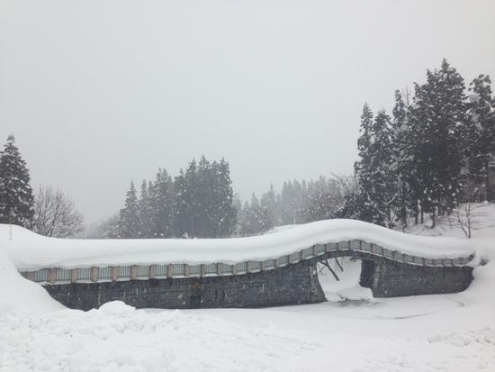 ブリザードコースをリピート! 須原スキー場のクチコミ画像
