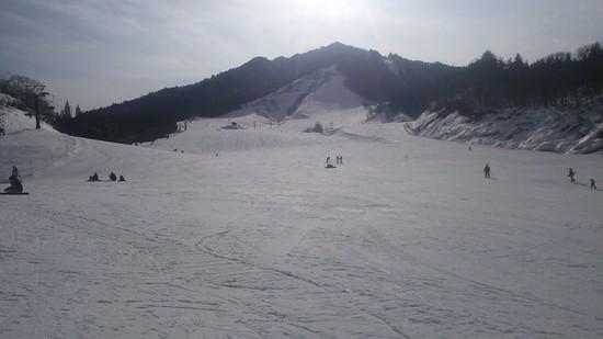 ファミリーやパウダーを滑りたい人にはお勧め|飛騨かわいスキー場のクチコミ画像