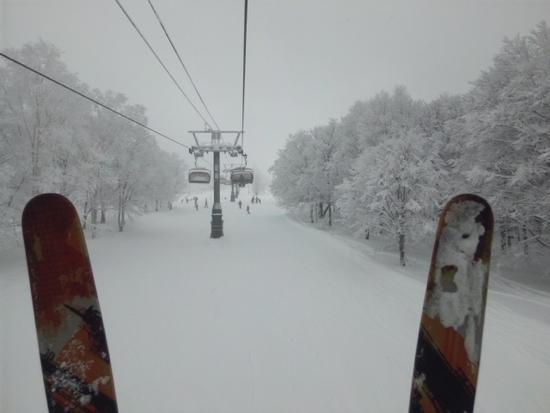 パウダー最高 野沢温泉スキー場のクチコミ画像