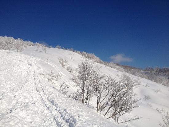 やっぱりジャム勝|スキージャム勝山のクチコミ画像