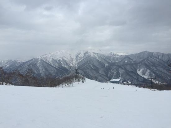 雪少ないが楽しめます|苗場スキー場のクチコミ画像