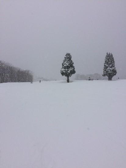 混んでるけど、雪は最高|高鷲スノーパークのクチコミ画像