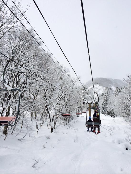 降った翌日|白馬八方尾根スキー場のクチコミ画像
