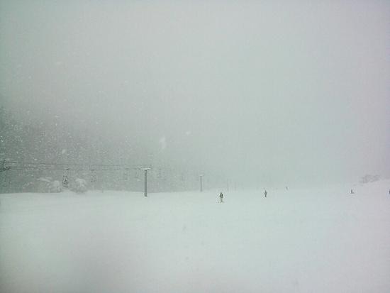 極上新雪パウダー(^_^)ノ 野沢温泉スキー場のクチコミ画像