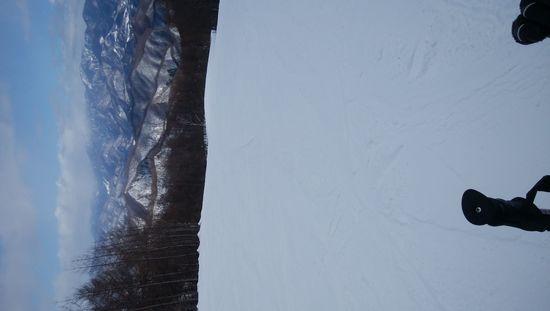 コース新設???|オグナほたかスキー場のクチコミ画像