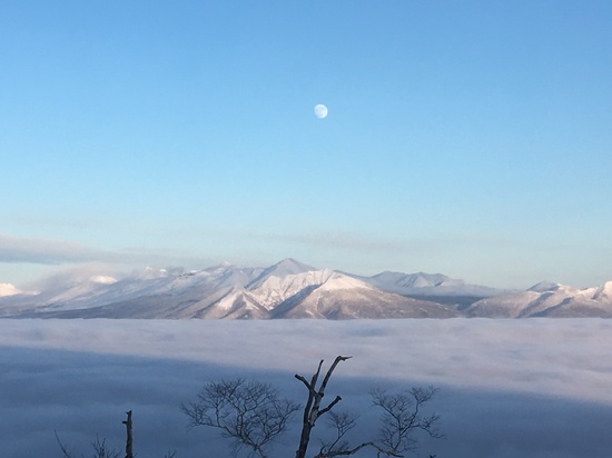 絶景!雲海|富良野スキー場のクチコミ画像