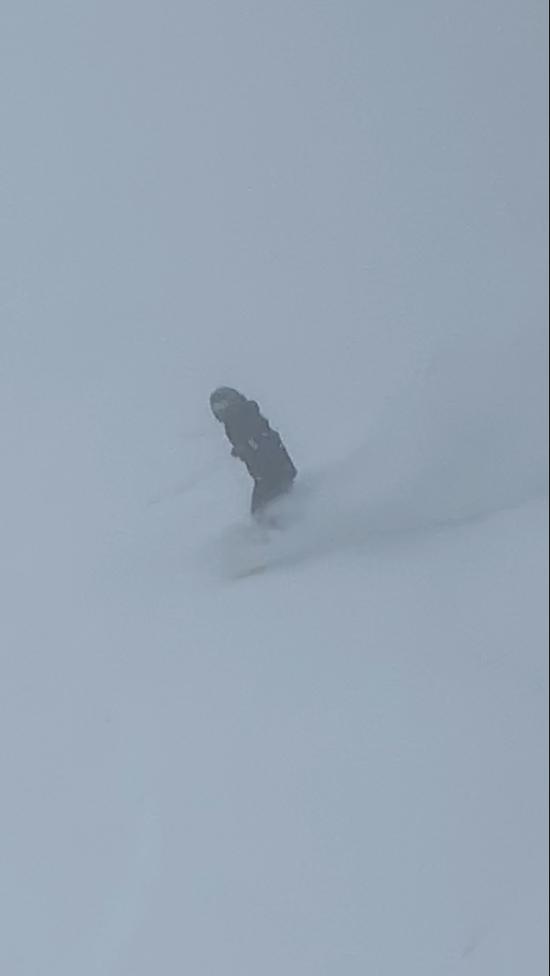 4月も半ばにまさかのパウダー|丸沼高原スキー場のクチコミ画像1