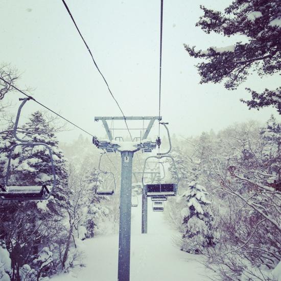 極上のパウダー天国 みやぎ蔵王スキー場 すみかわスノーパークのクチコミ画像