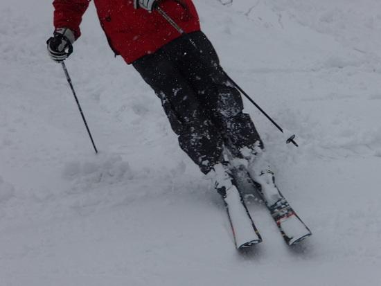 暖冬でしたがこの日はもこもこ|神鍋高原 万場スキー場のクチコミ画像