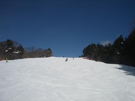 今シーズン2度目!|鷲ヶ岳スキー場のクチコミ画像3