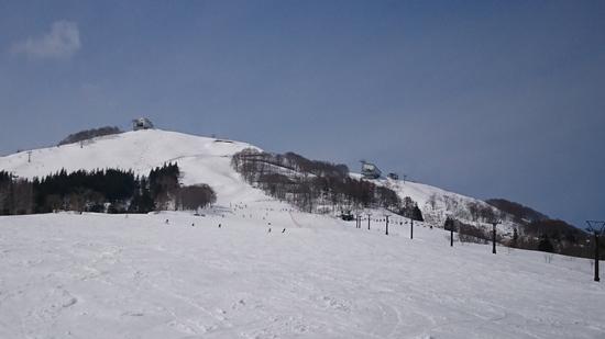 裏の方のゲレンデ|岩原スキー場のクチコミ画像