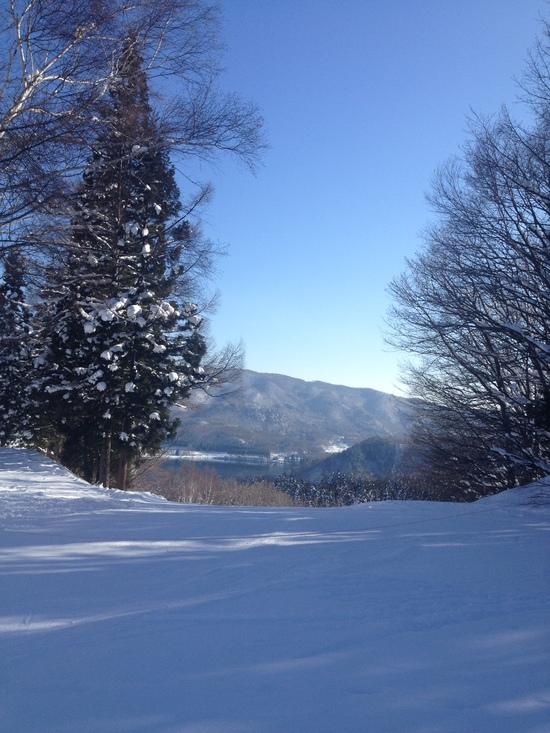 雪と木と湖|白馬さのさかスキー場のクチコミ画像