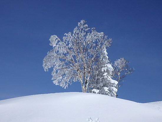 雪一色|竜王スキーパークのクチコミ画像