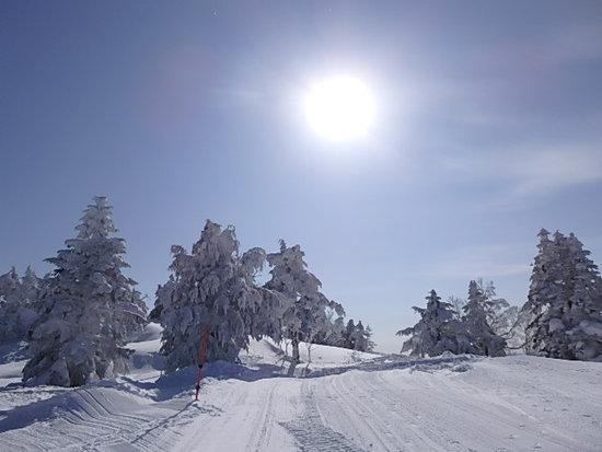 雪一色|竜王スキーパークのクチコミ画像2