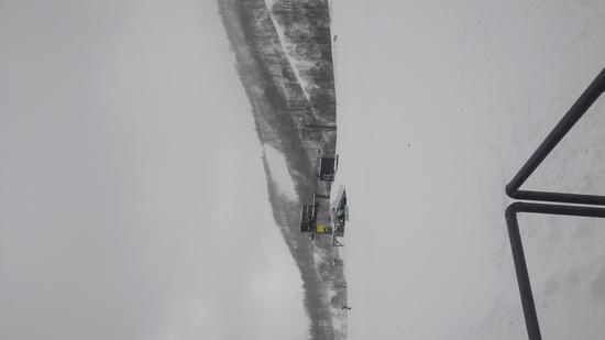 パウダー天国|かぐらスキー場のクチコミ画像
