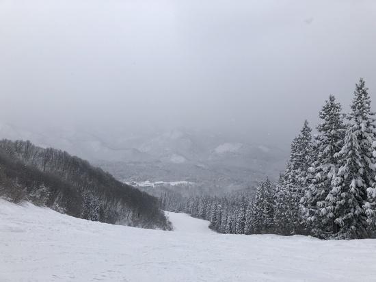 わかぶな高原スキー場のフォトギャラリー1
