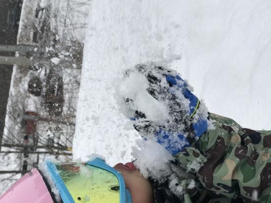 小さい子の雪遊びに良いゲレンデ|やぶはら高原スキー場のクチコミ画像