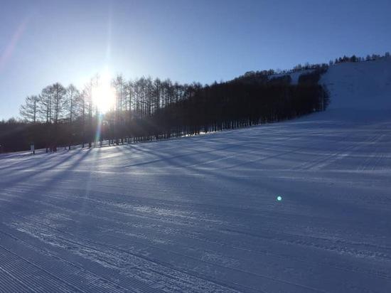 1日楽しめる|しらかば2in1スキー場のクチコミ画像1