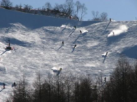 パウダーねらい目|白馬岩岳スノーフィールドのクチコミ画像