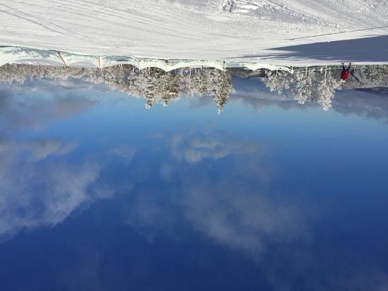 天気、樹氷最高でした!|菅平高原スノーリゾートのクチコミ画像