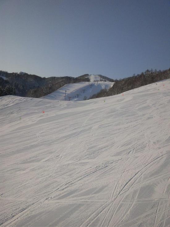 最高のパウダースノー!|朝里川温泉スキー場のクチコミ画像2