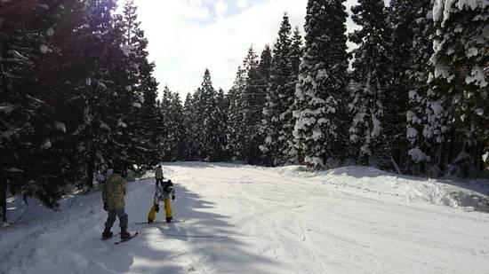 良くも悪くも昔の面影|赤倉温泉スキー場のクチコミ画像