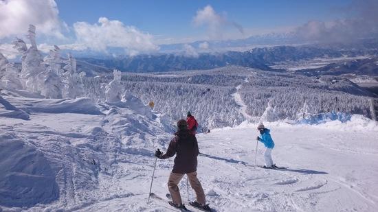 本州とは思えない最高の雪質、樹氷、温泉|蔵王温泉スキー場のクチコミ画像