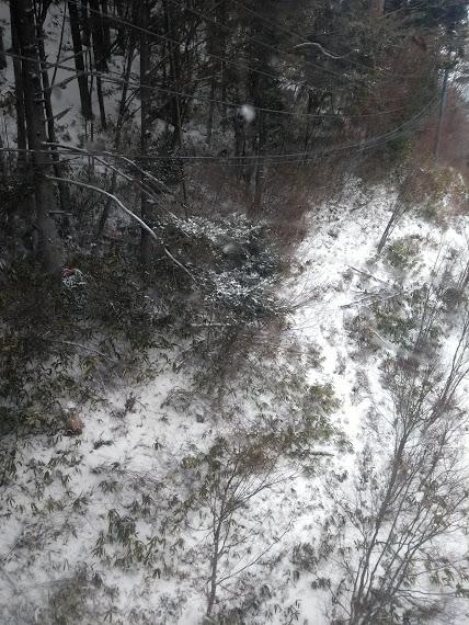 ヘブンスそのはら SNOW WORLDのフォトギャラリー1