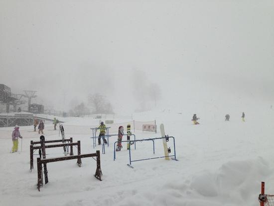 パウダー三昧|かぐらスキー場のクチコミ画像