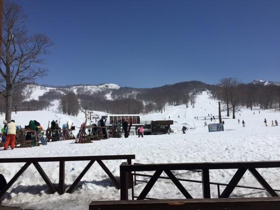 雪量が豊富|たんばらスキーパークのクチコミ画像