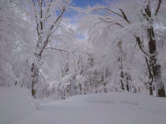 蔵王温泉スキー場のフォトギャラリー6