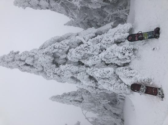 樹氷とともに!!|パルコールつま恋スキーリゾートのクチコミ画像