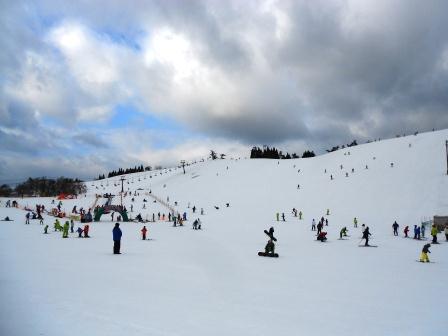 ファミリー向け|箱館山スキー場のクチコミ画像