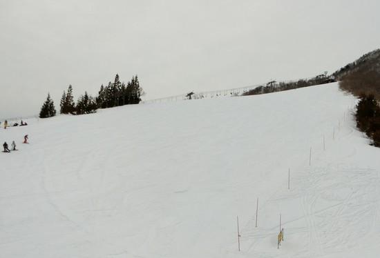 上級者は山頂へ|岩原スキー場のクチコミ画像