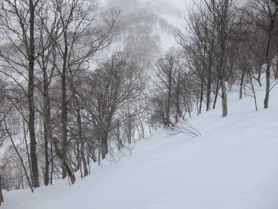 2014/03/03(月) 北海道 アンヌプリ国際の速報|ニセコアンヌプリ国際スキー場のクチコミ画像