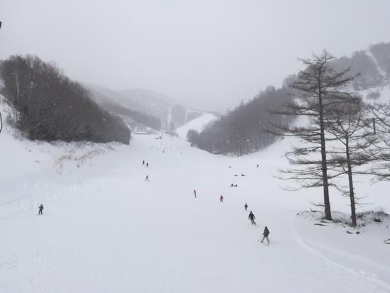 コスパ良し|オグナほたかスキー場のクチコミ画像2