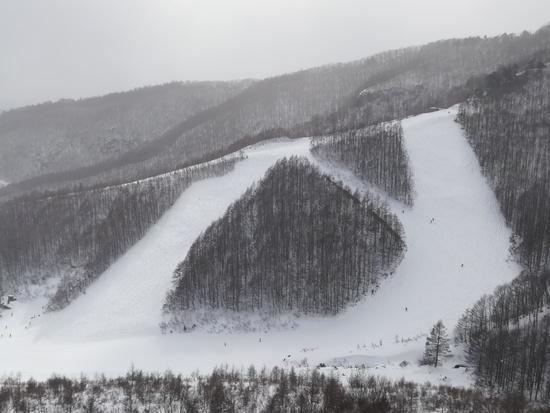 コスパ良し|オグナほたかスキー場のクチコミ画像3