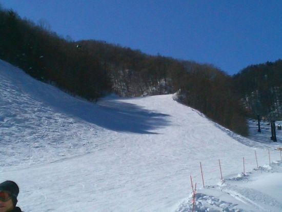 スキー|やぶはら高原スキー場のクチコミ画像