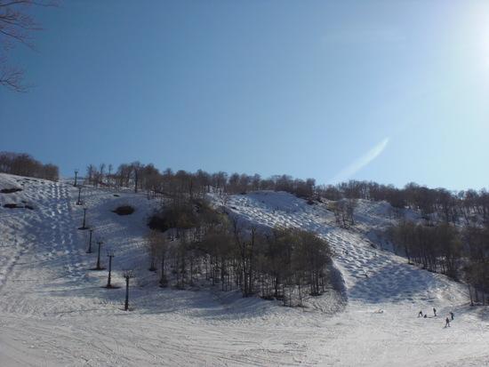 コブ好きには最高です! 奥只見丸山スキー場のクチコミ画像