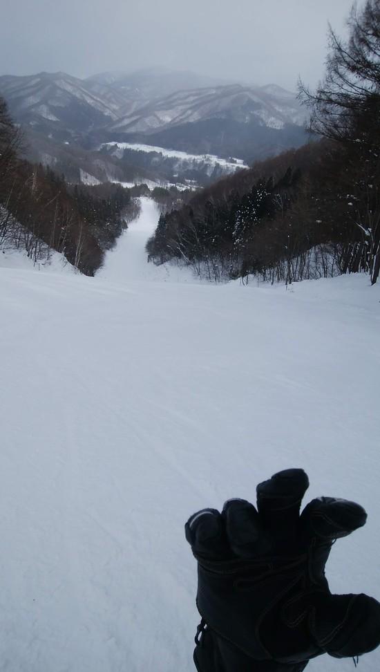 かたしな高原スキー場のフォトギャラリー3