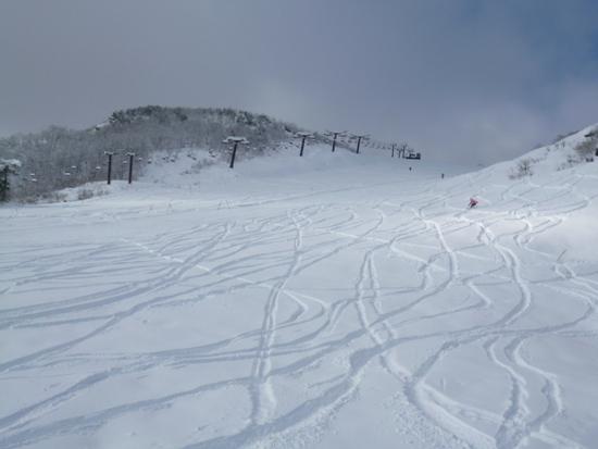 初滑り 天然雪100%|エイブル白馬五竜のクチコミ画像