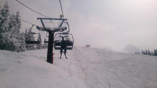 3月2週目の雪質ではない!(良好)|スキージャム勝山のクチコミ画像3