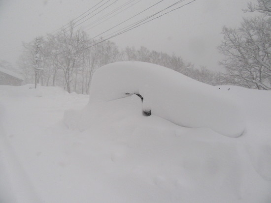 一晩で積雪1m|妙高杉ノ原スキー場のクチコミ画像