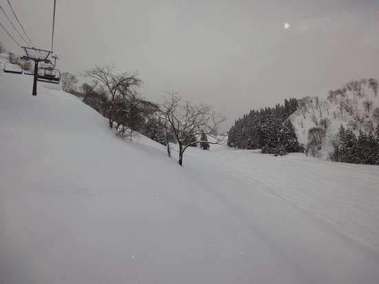 とっても空いてます|戸狩温泉スキー場のクチコミ画像