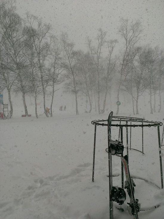最高の粉雪|水上高原スキーリゾートのクチコミ画像