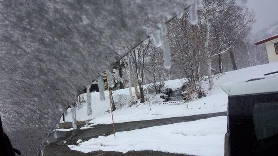一日中雪で、予想以上に寒かったです|奥志賀高原スキー場のクチコミ画像1