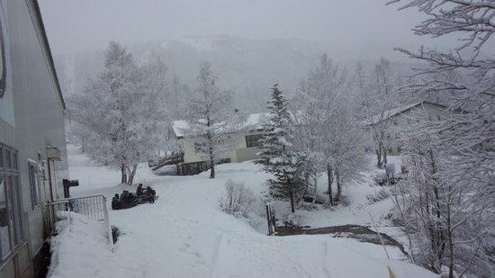 一日中雪で、予想以上に寒かったです|奥志賀高原スキー場のクチコミ画像2