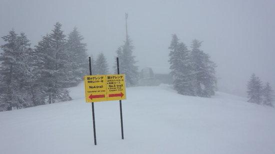 一日中雪で、予想以上に寒かったです|奥志賀高原スキー場のクチコミ画像3
