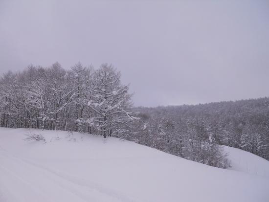 家族でスキー|斑尾高原スキー場のクチコミ画像2