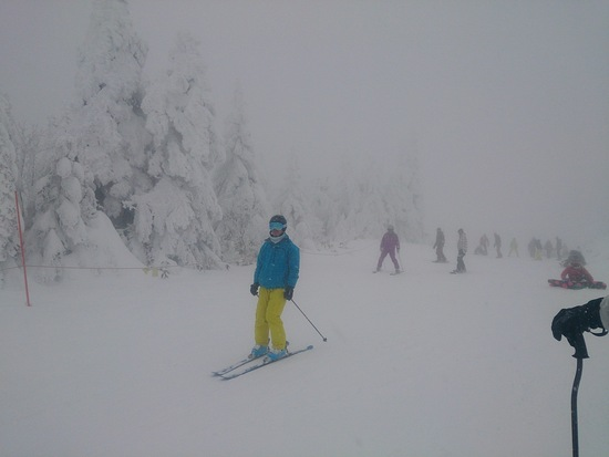 少し重いですが降り続いています|蔵王温泉スキー場のクチコミ画像